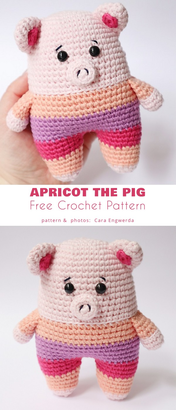 Apricot the Pig