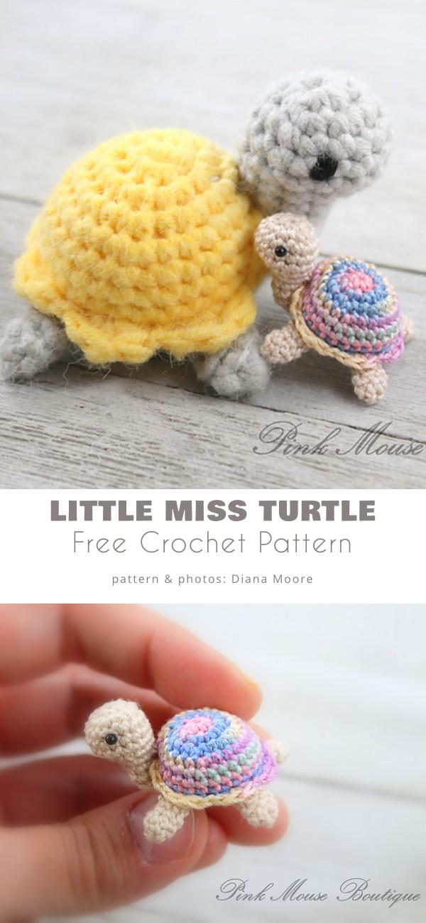 Little Miss Turtle