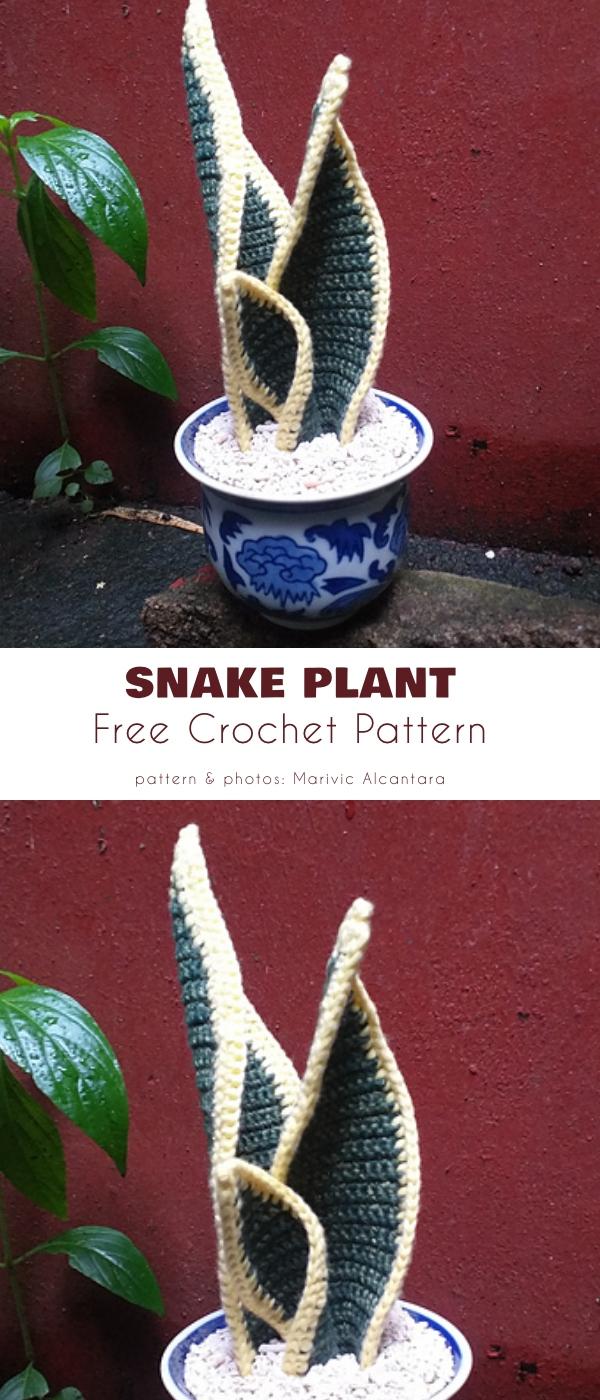 Amigurumi Crochet Snake plant