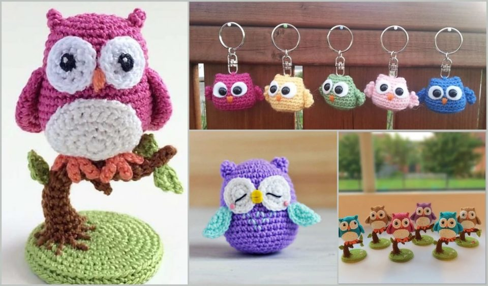 Cute Ami Owl Collection