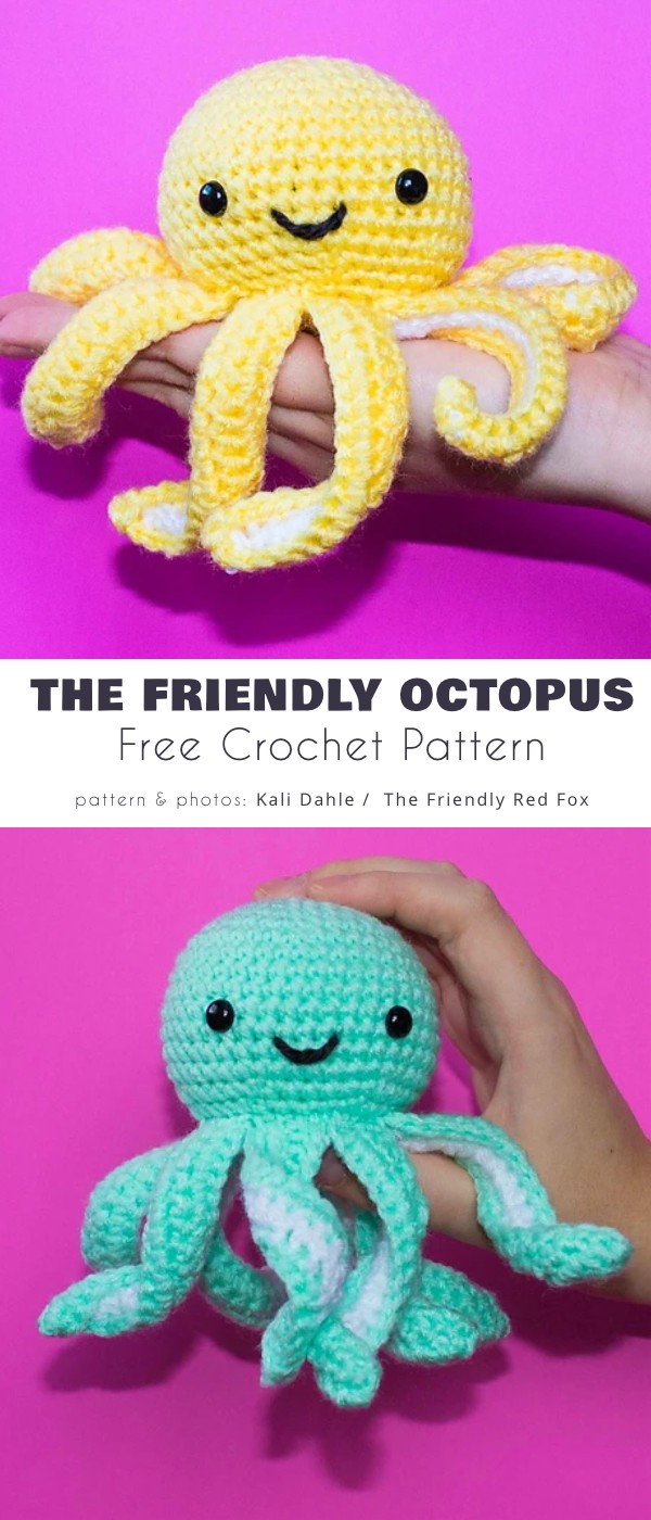 The Friendly Mini Octopus