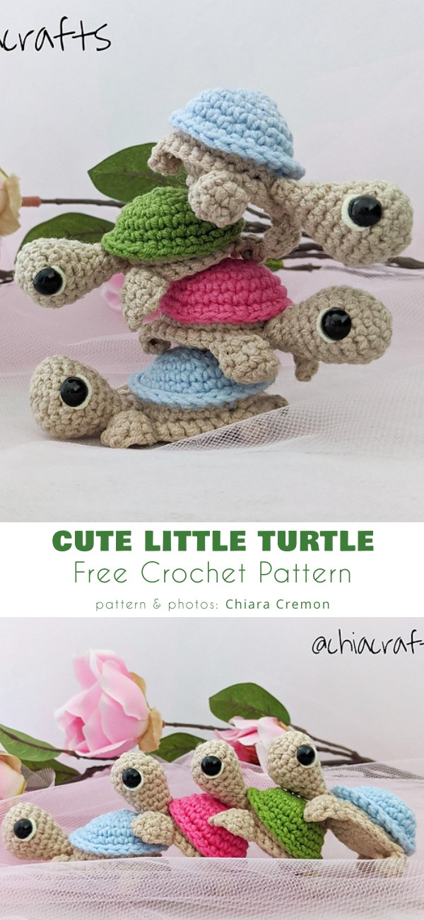 Cute Little Turtle