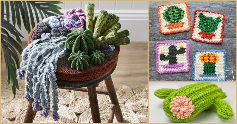 Cactus Crochet Projects