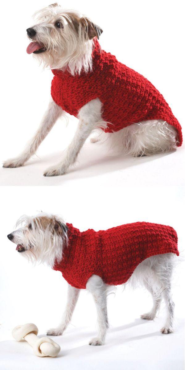 Dog Coat (Crochet)