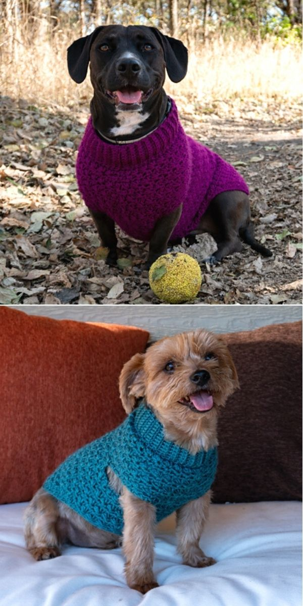 Stellar Dog Sweater