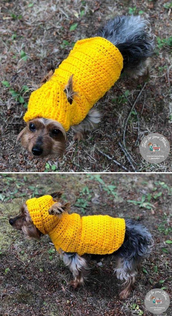 small dog hoodie sweater