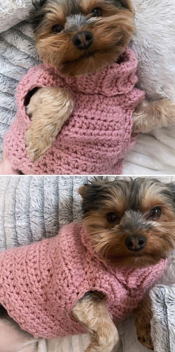 minnie's turtleneck dog sweater