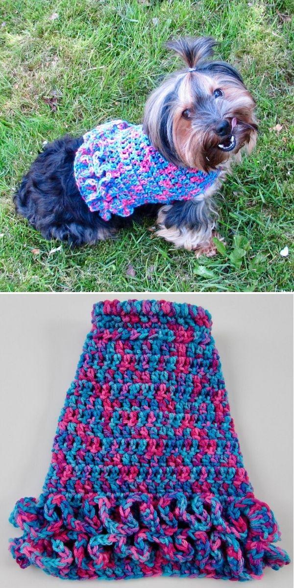Ruffled Small Dog Sweater